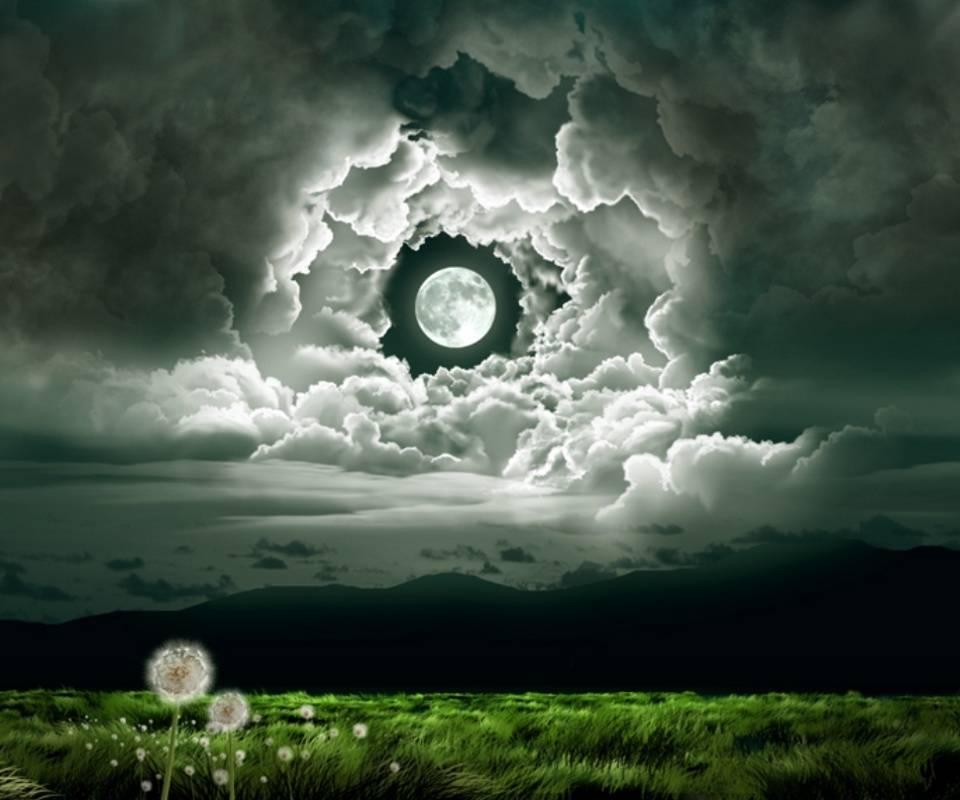 Moonlight907