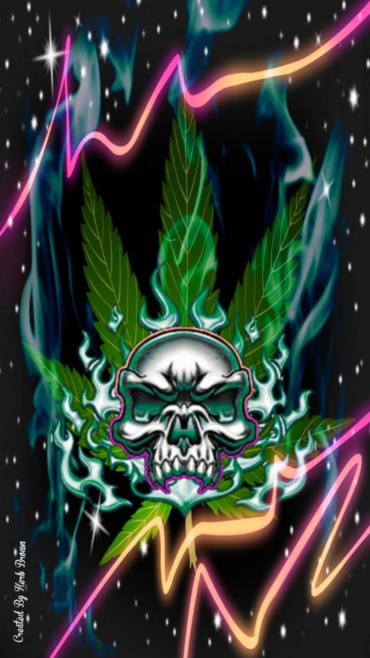 Pot Skull
