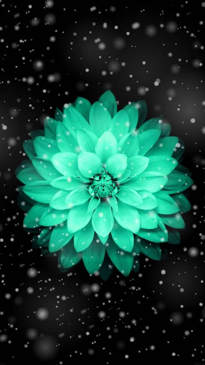 Pretty blue flower wallpaper by