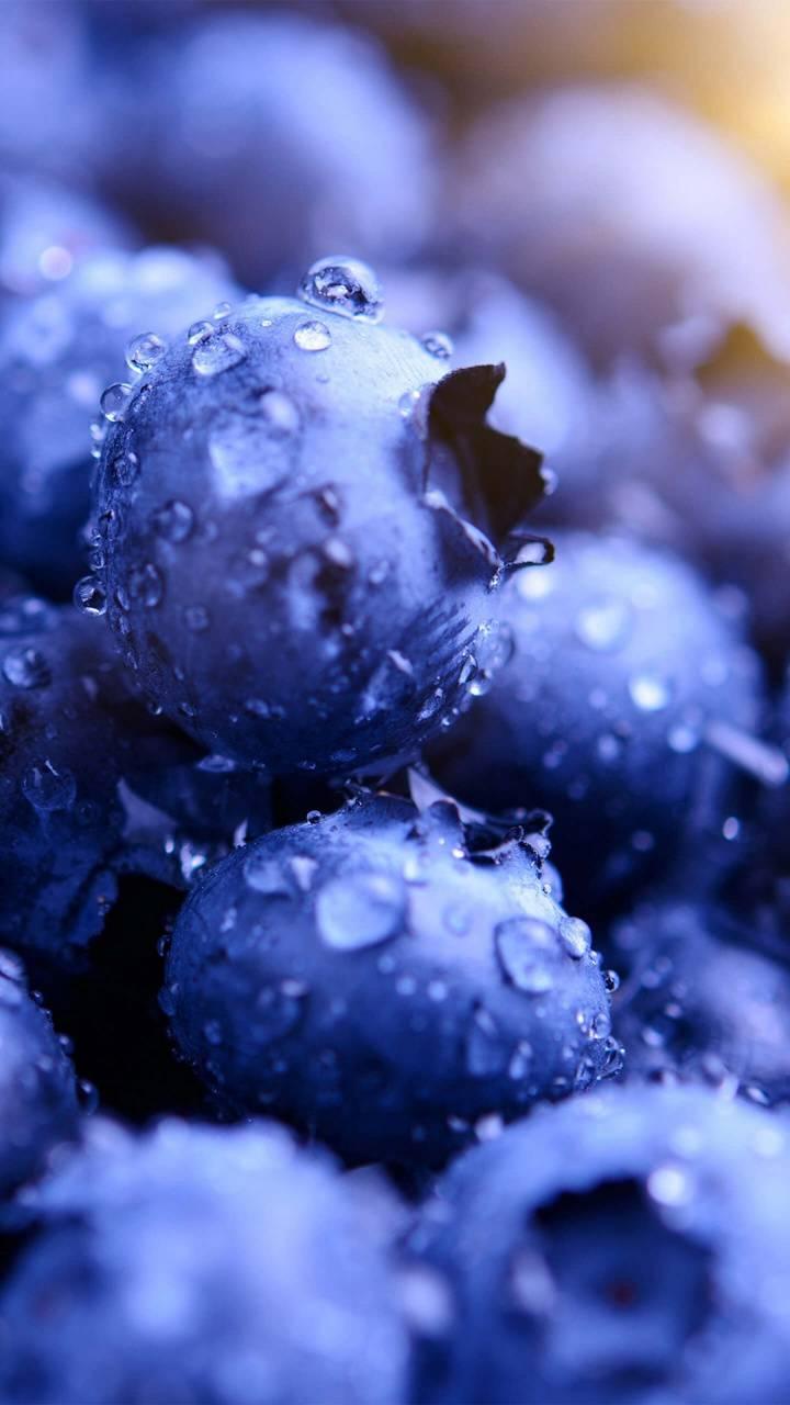Blueberries HD