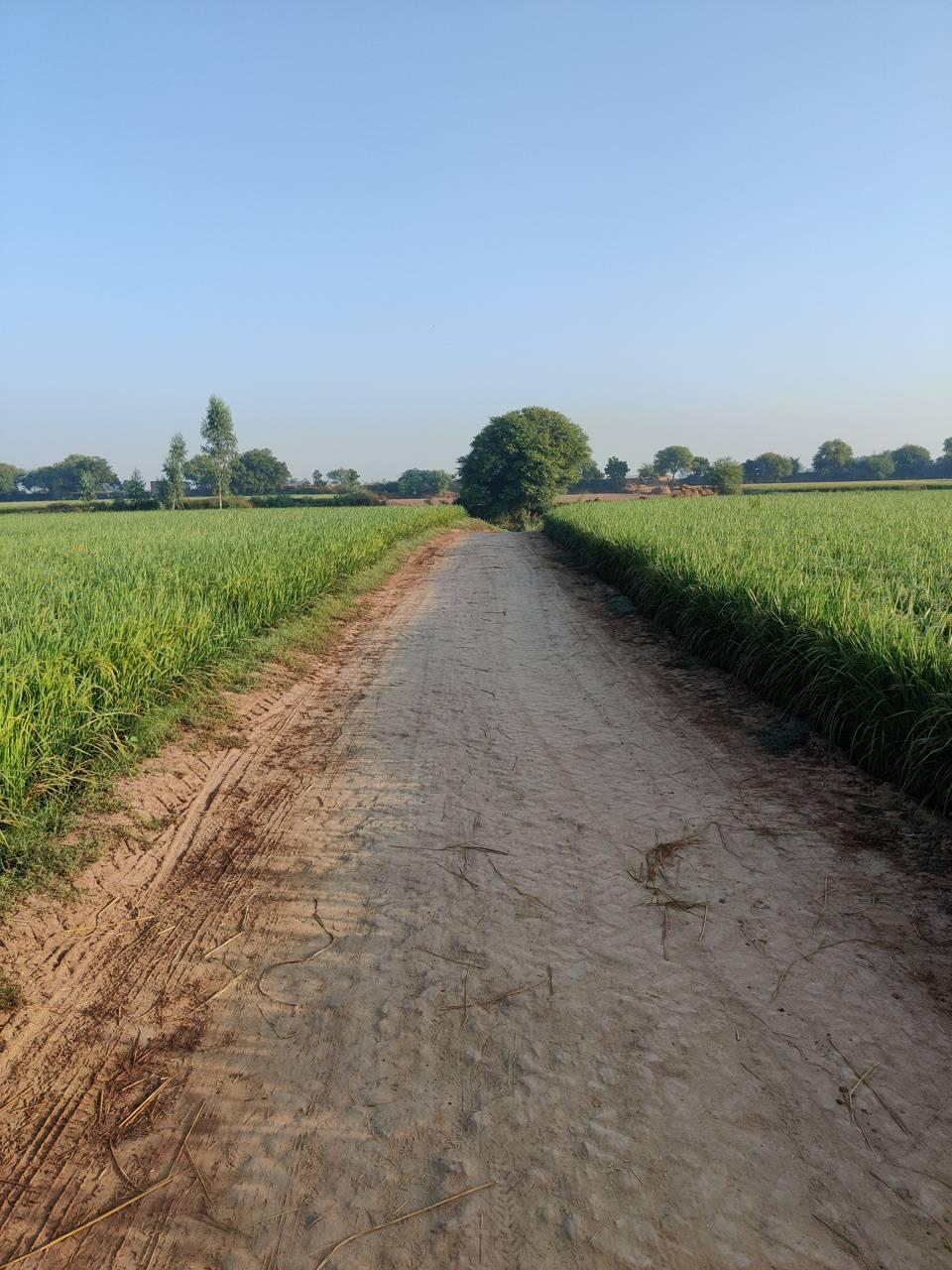 Cycling roads