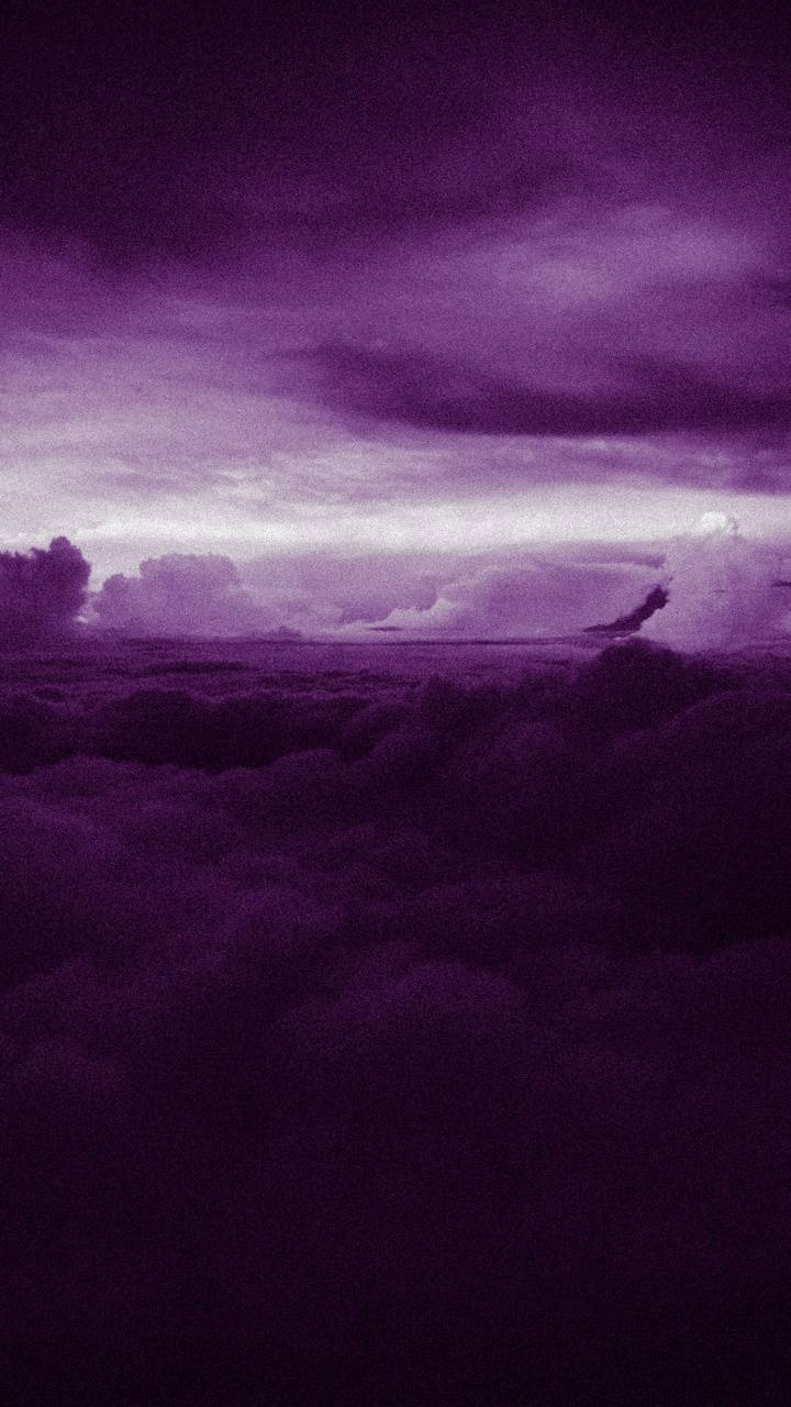 Heaven Purple