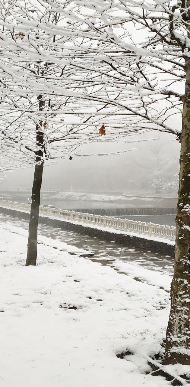Winter in Gabala