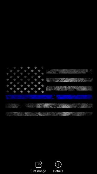 American Flag Police