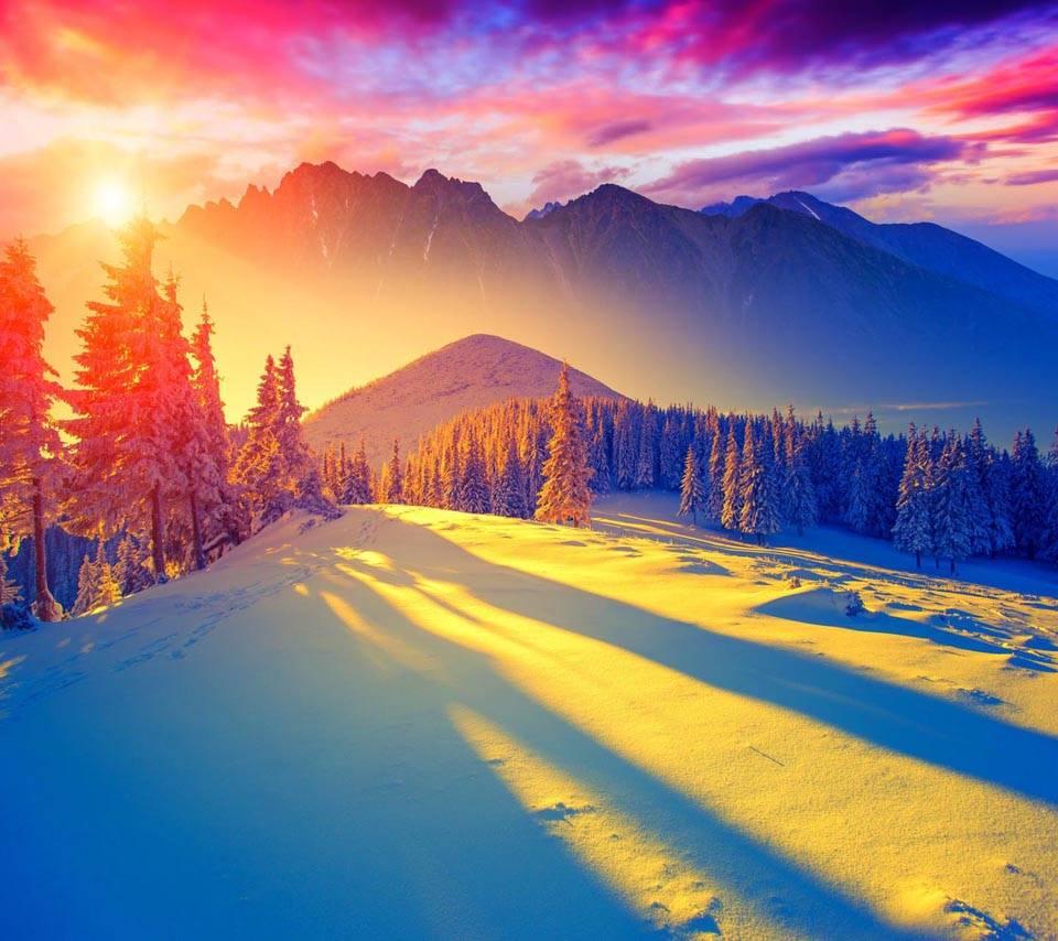 Beautiful Winterscap