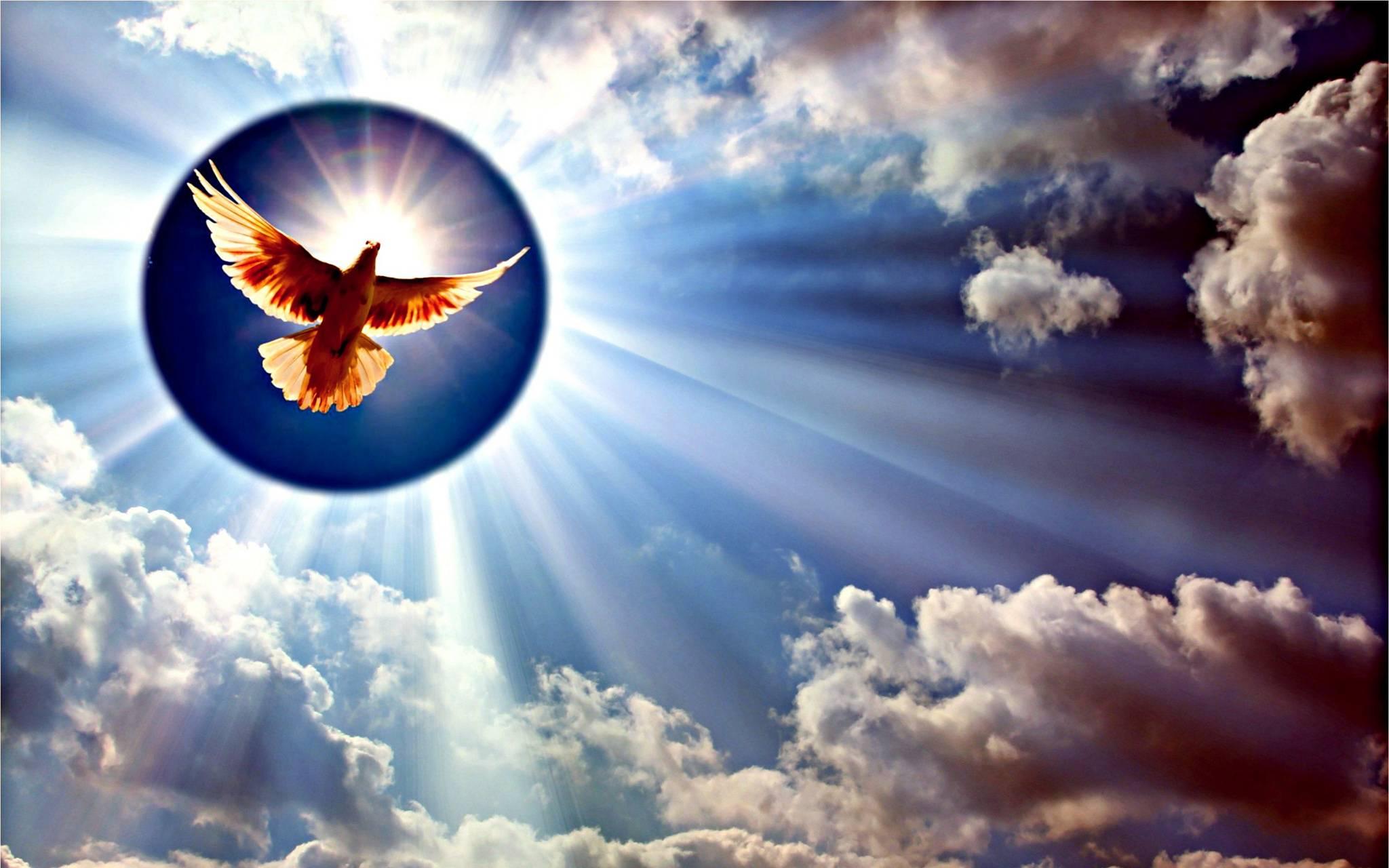 картинка солнышко и ангел ведь