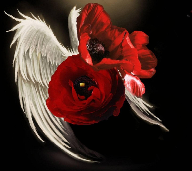 Red Angel Flower