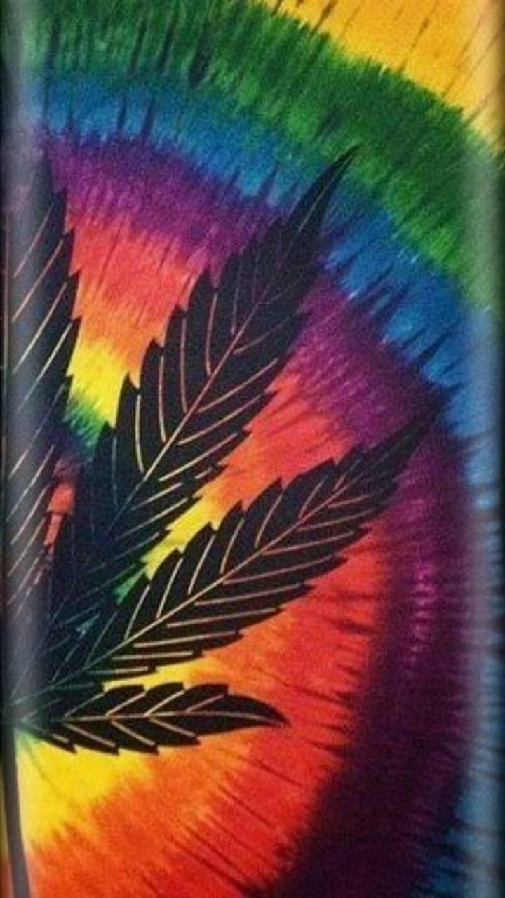 Rainbow W**d