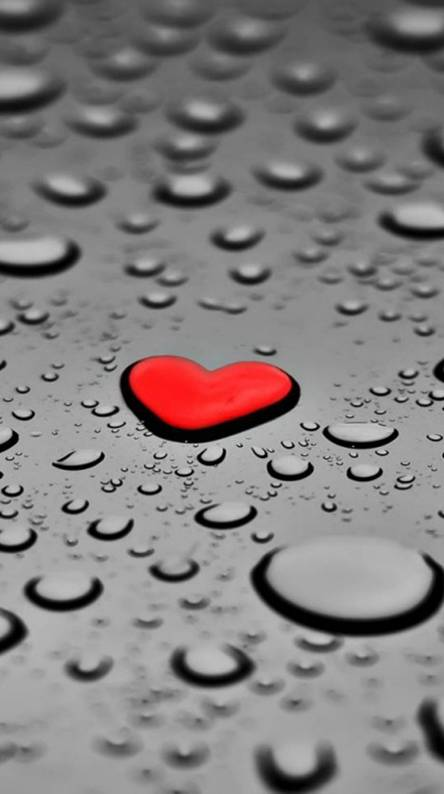 Drops Love Heart Ringtones And Wallpapers