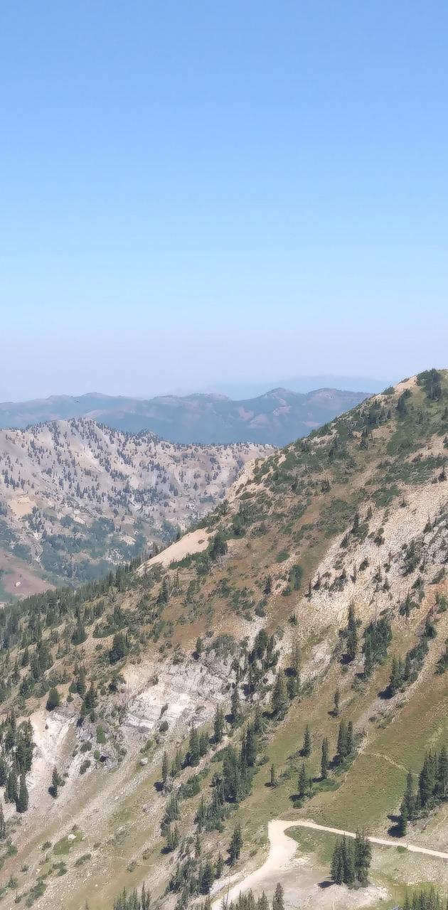 Snowbird mountains