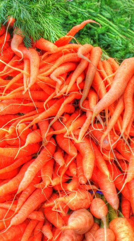 Anime Carrot