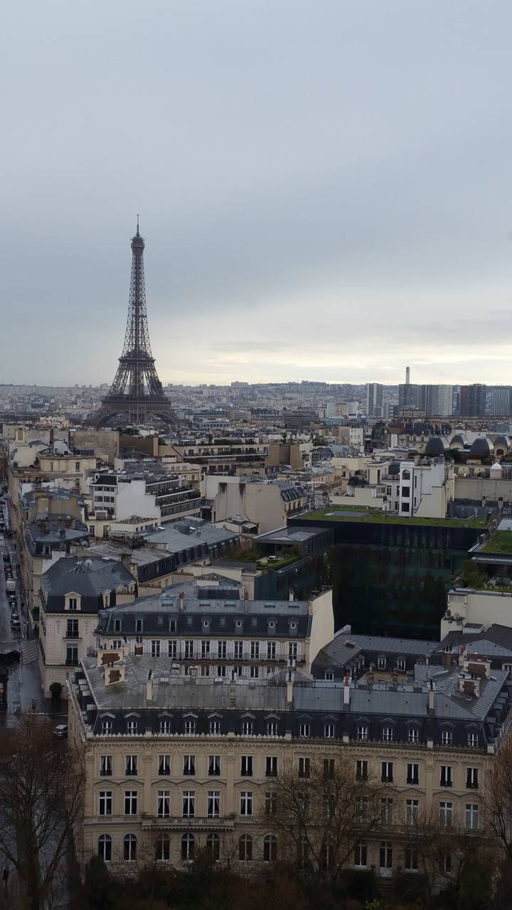 Paris from the arch