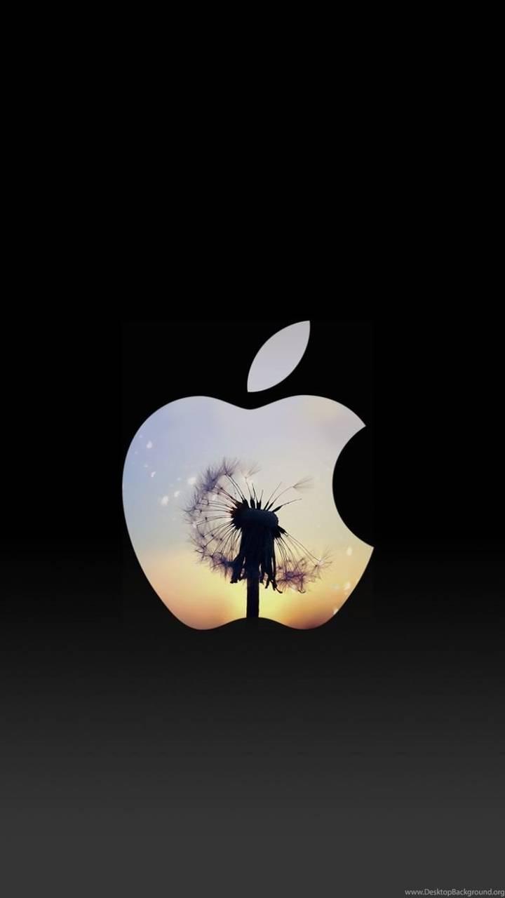 Samsung In Apple