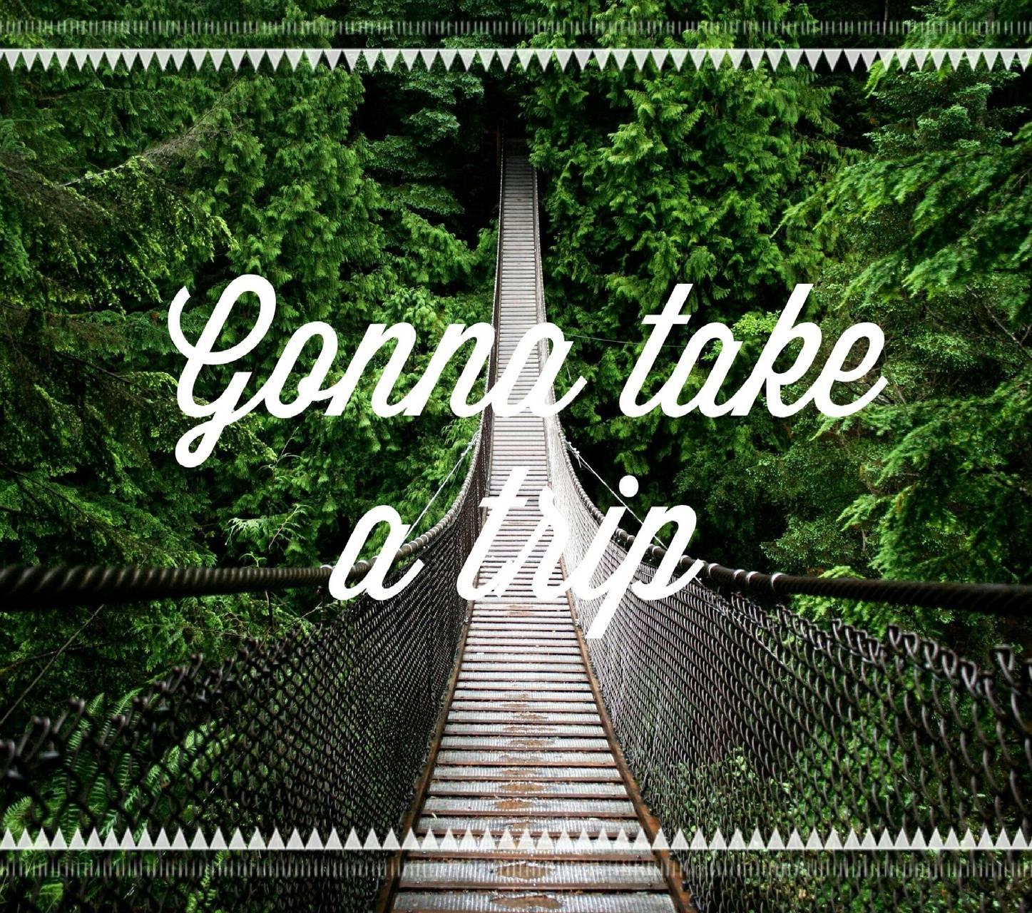 Gonna take a trip