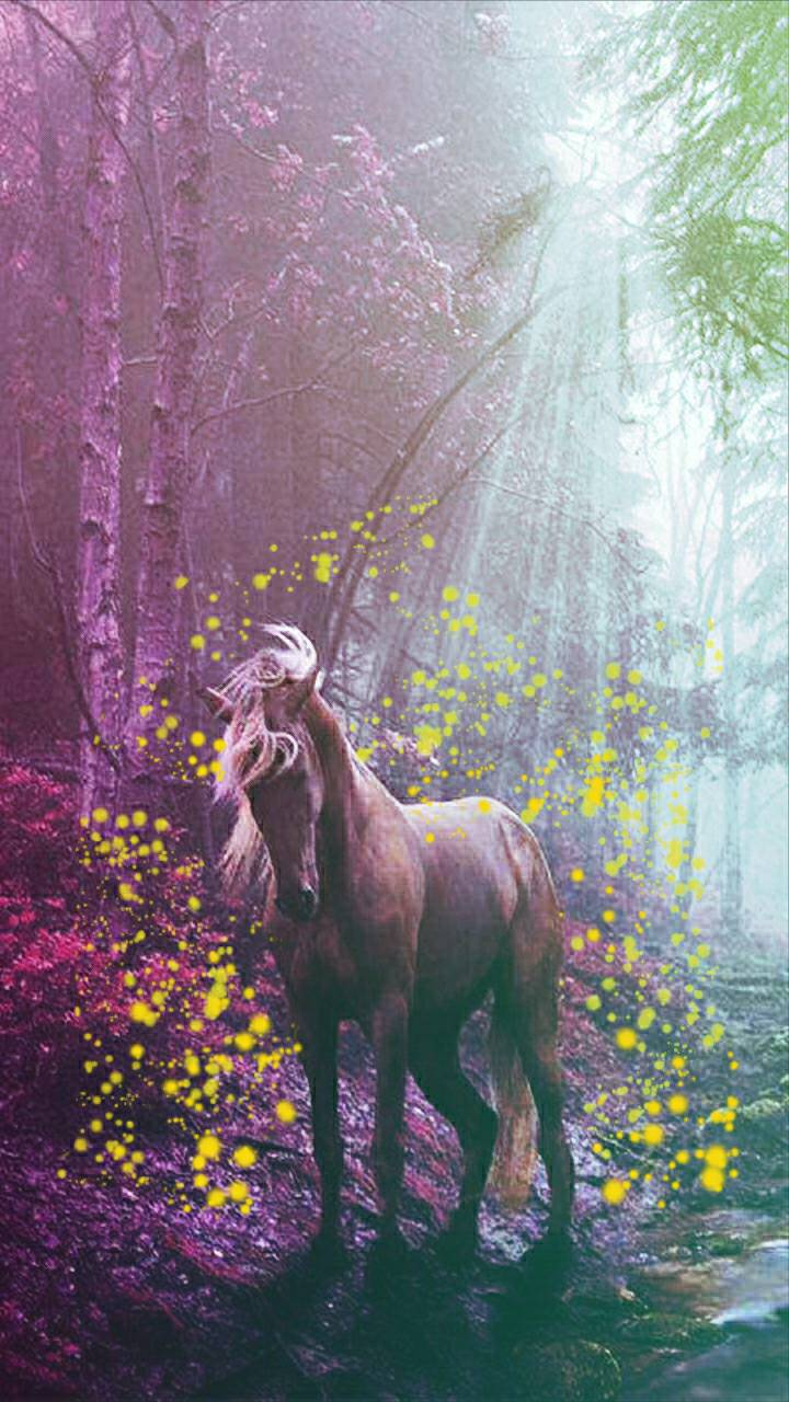 Pretty horse wallpaper by AngelVibes