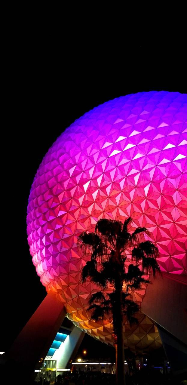 Disney World 13