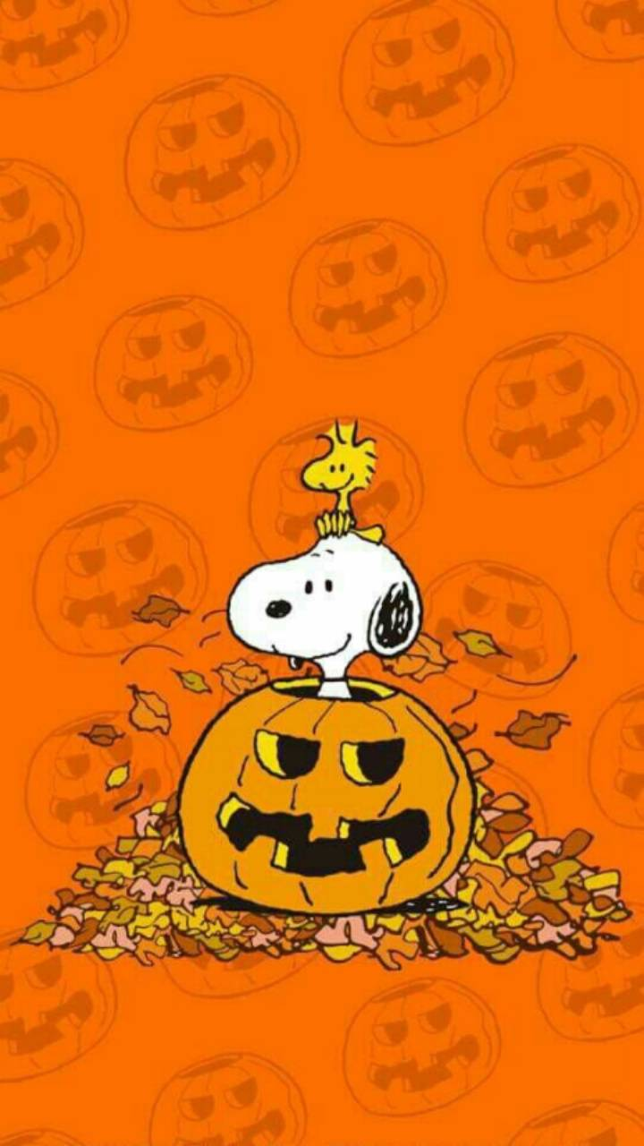 snoopy halloween iphone wallpaper - drive.cheapusedmotorhome