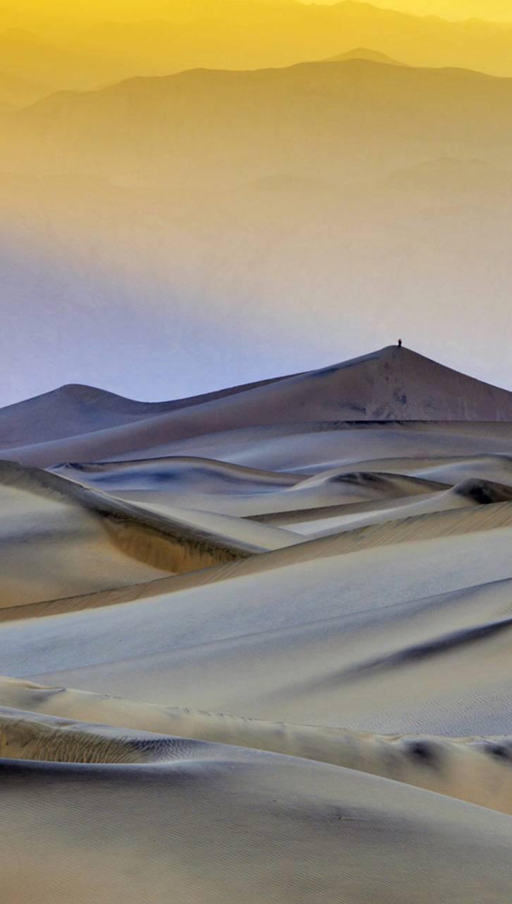 Flat Dunes