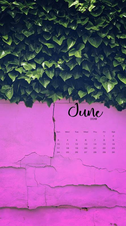 June Pink and Green