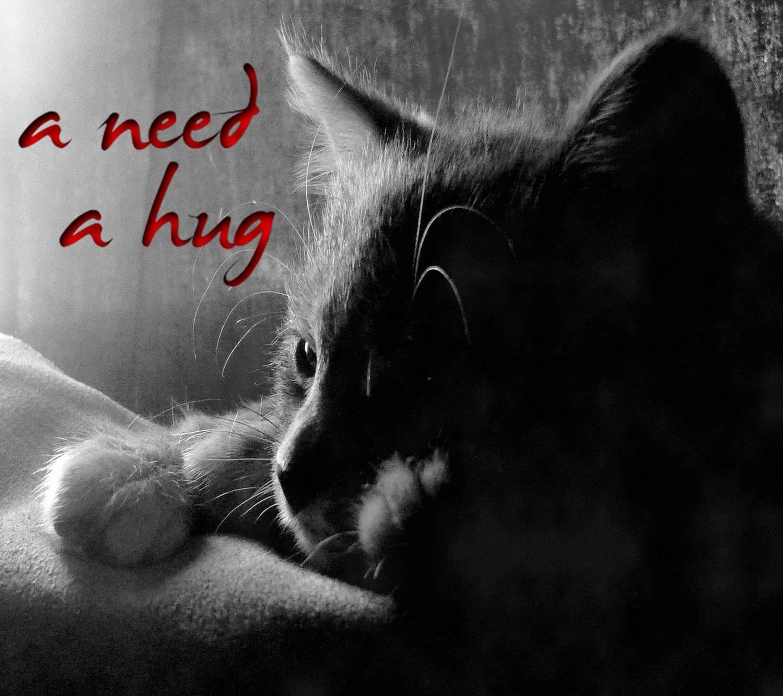 A Need A Hug