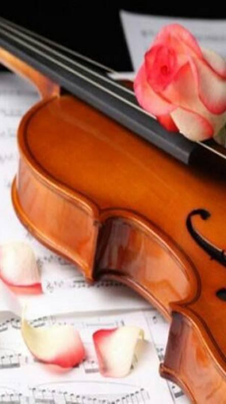 Musica 010
