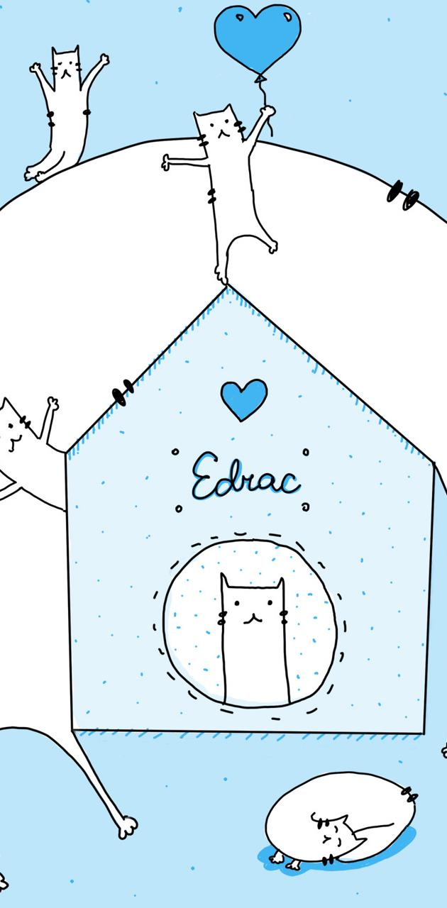 Family of cat Edrac