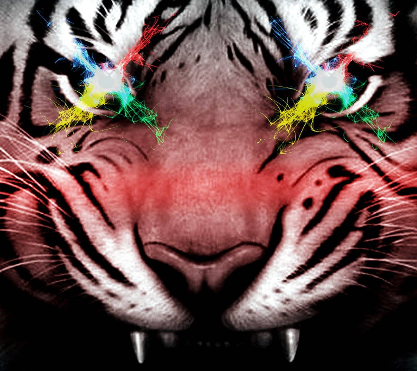 Eyes Of The Tiger Wallpaper By Saguaro 1f Free On Zedge