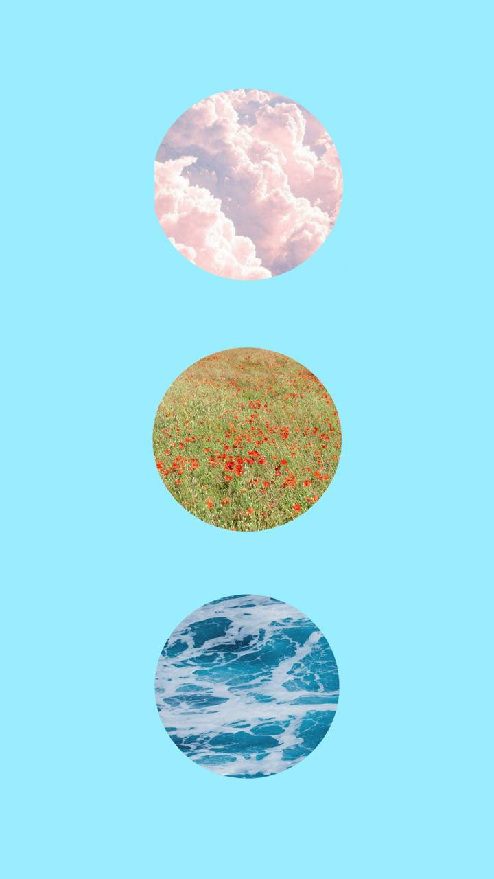 Nature in circles