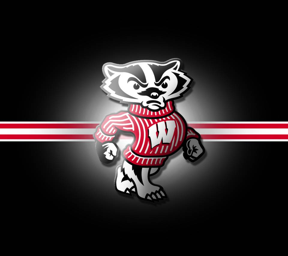 Wisconsin Badgers wallpaper by