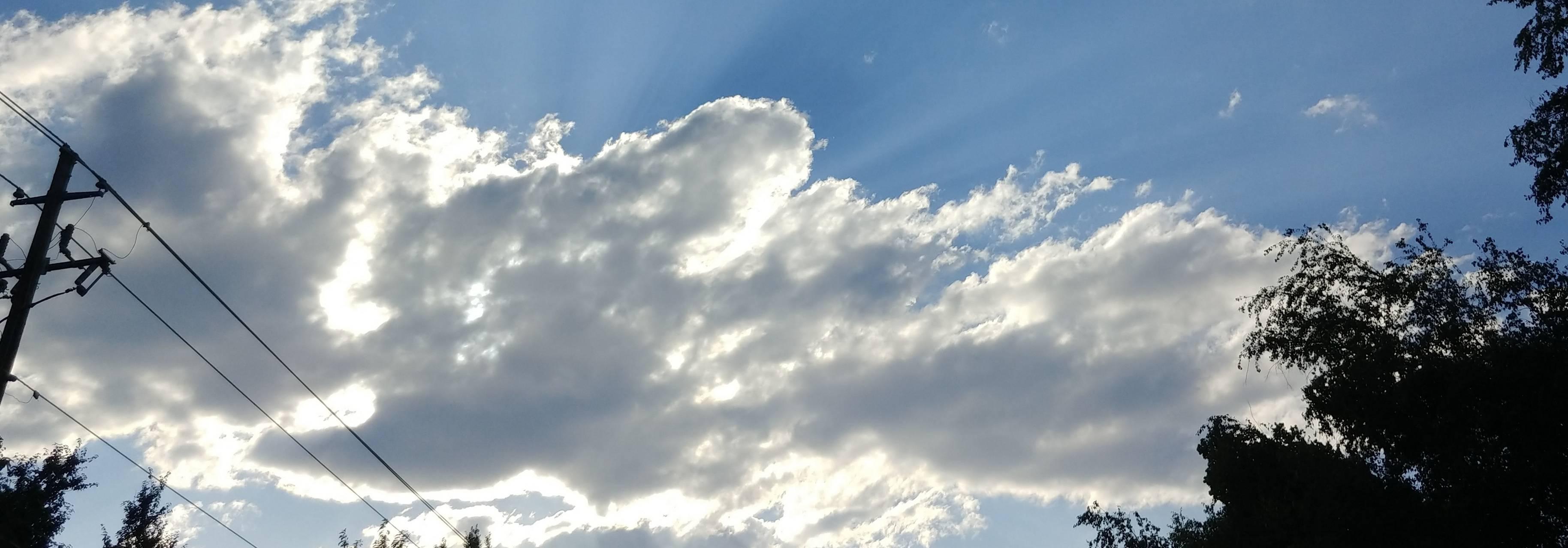 Sky of Blue Gum