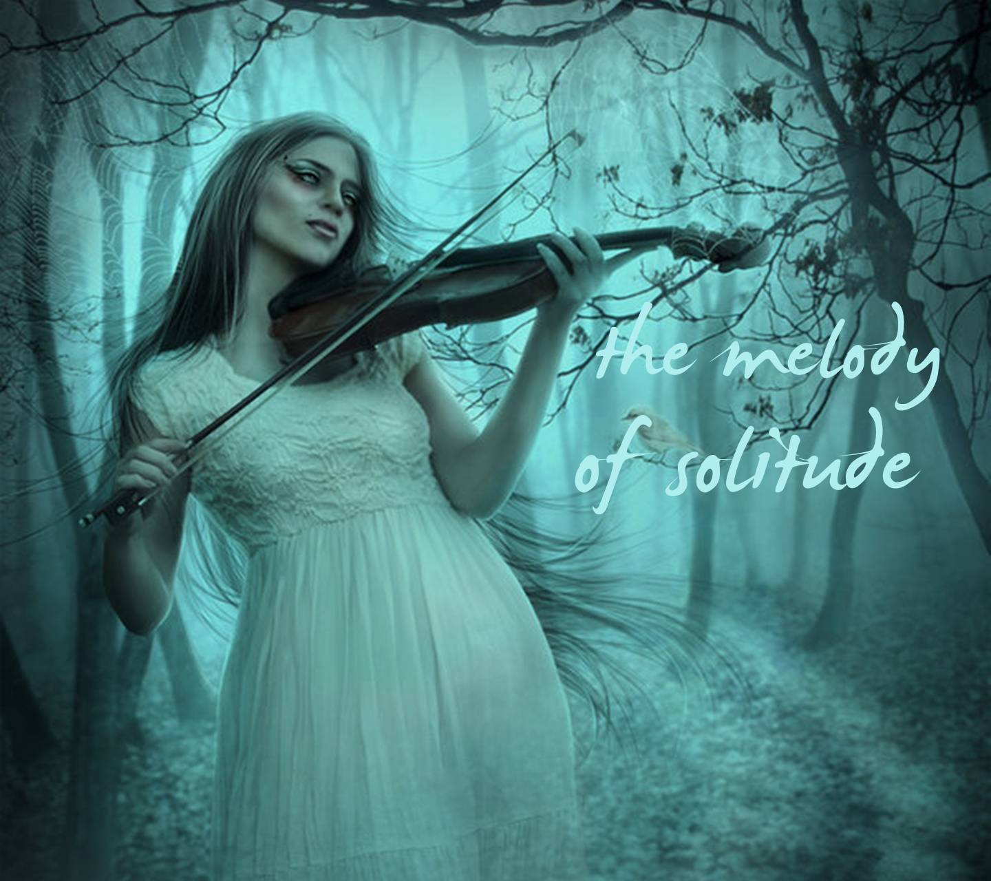 Melody Of Solitude
