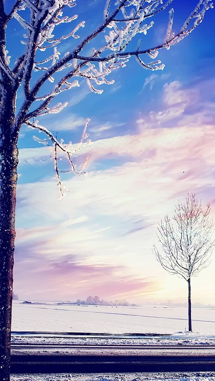 trees hd