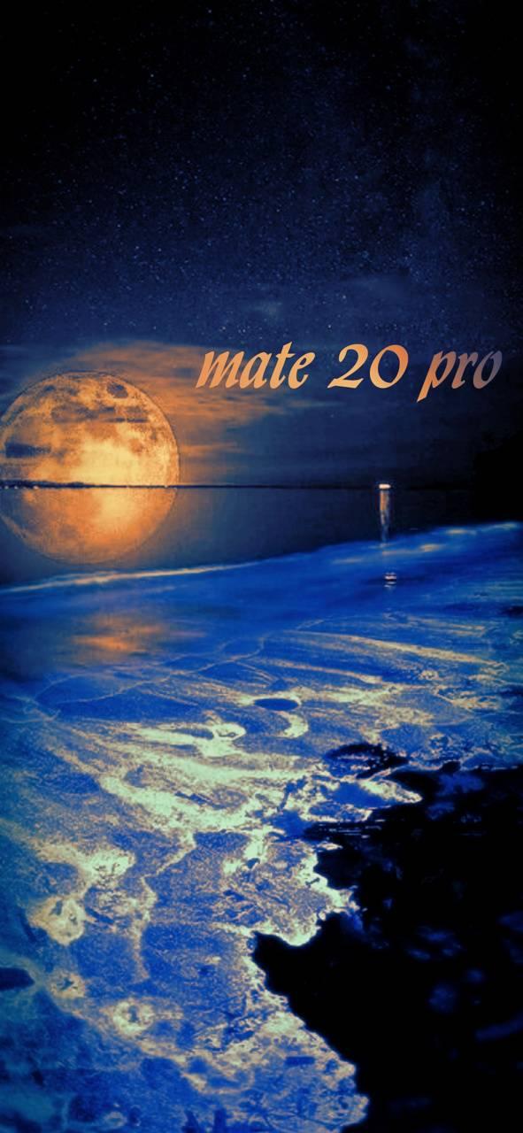 mate20pro