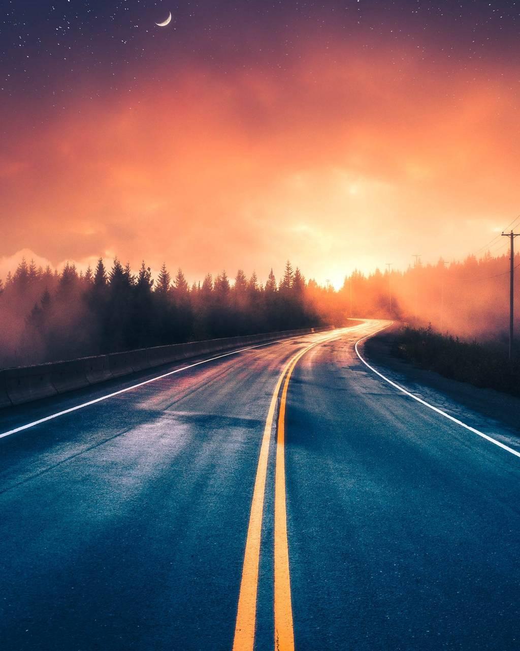 Road nature