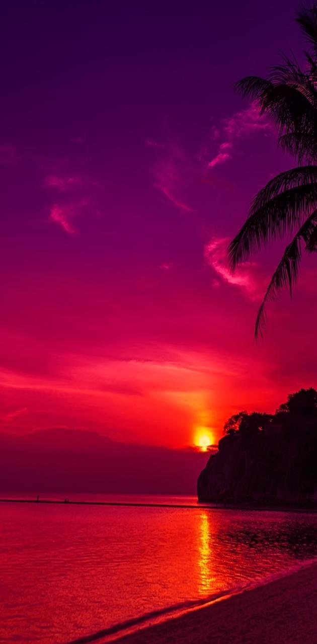 Epic Beach Sun