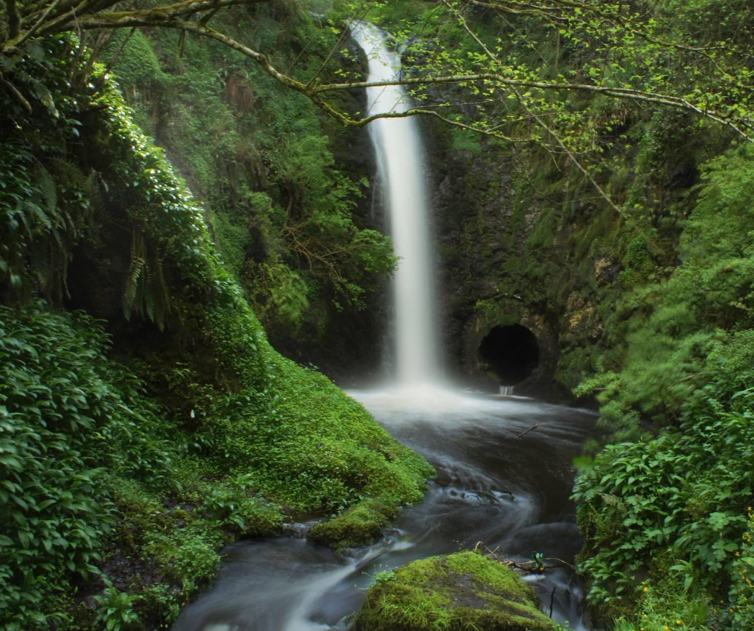 Woodburn Waterfall