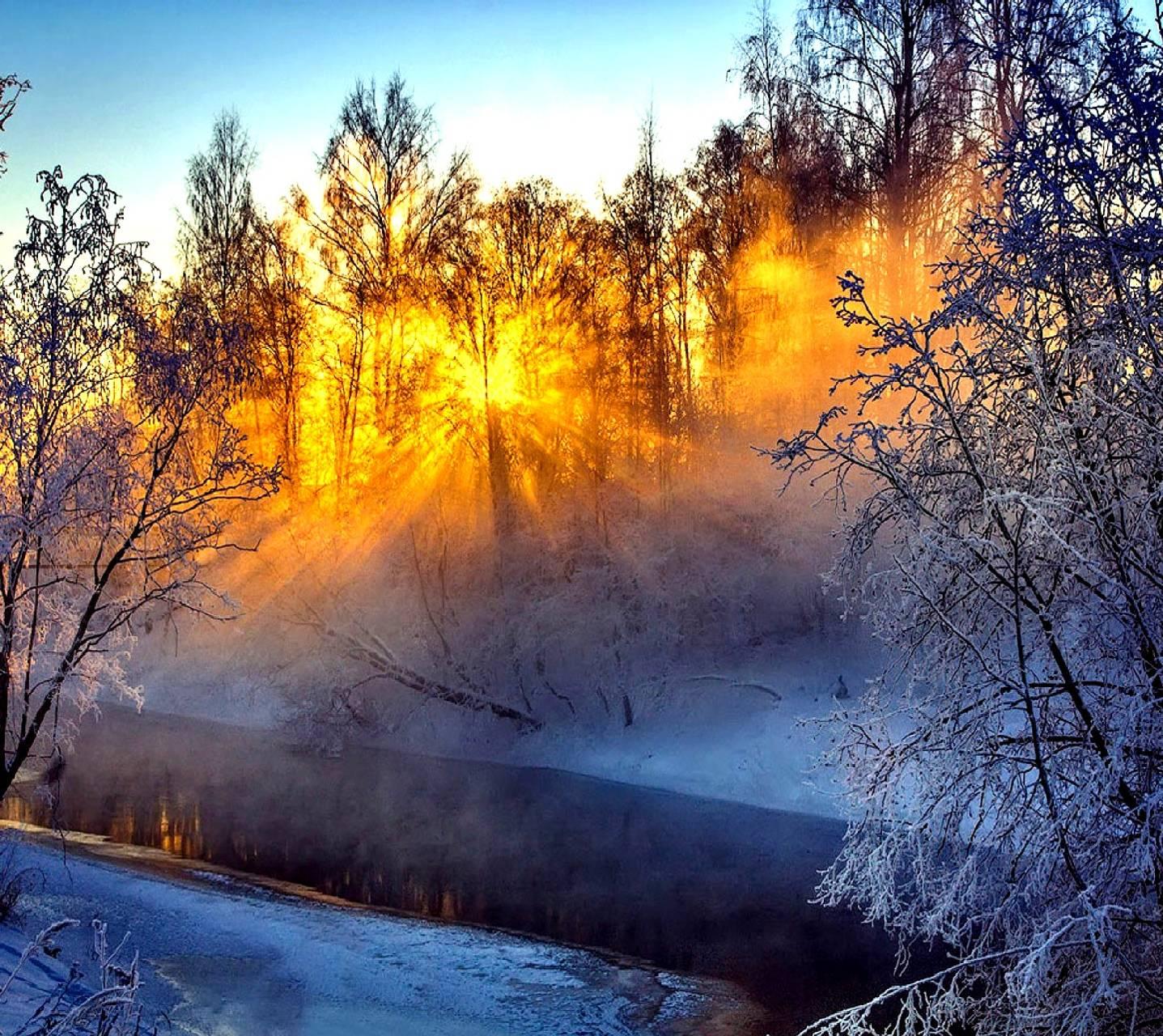 Открытка солнечный зимний день