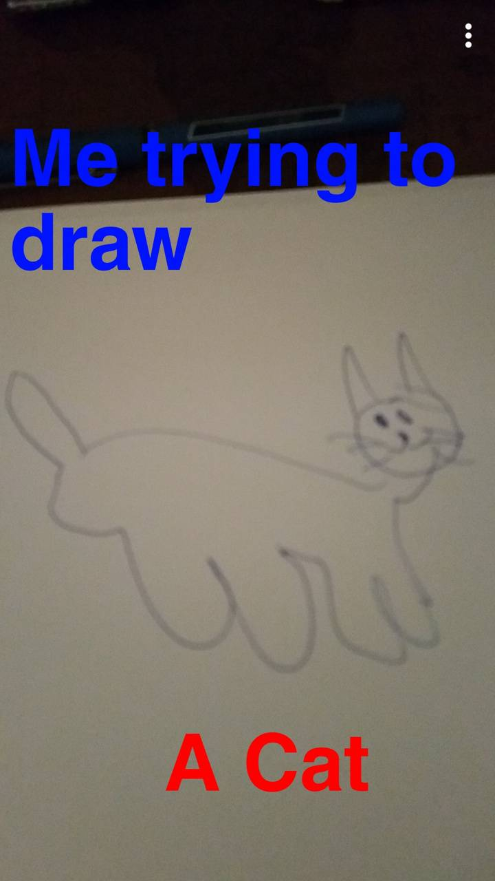 Trying to draw a cat