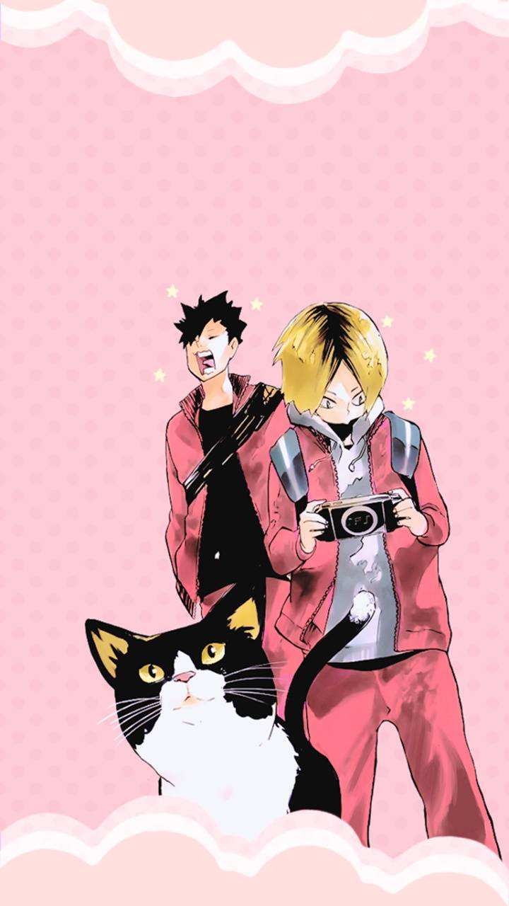 Kuroo Kenma and Cat