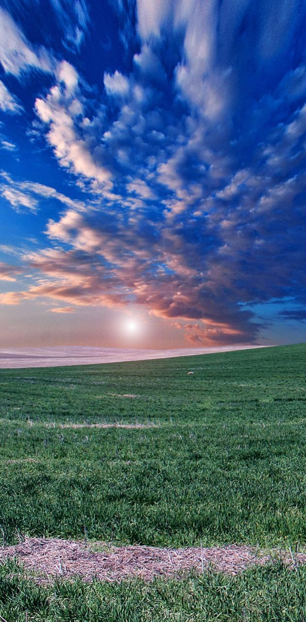 Horizon Field Sky