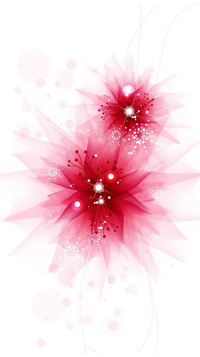 Beautiful Star 2012