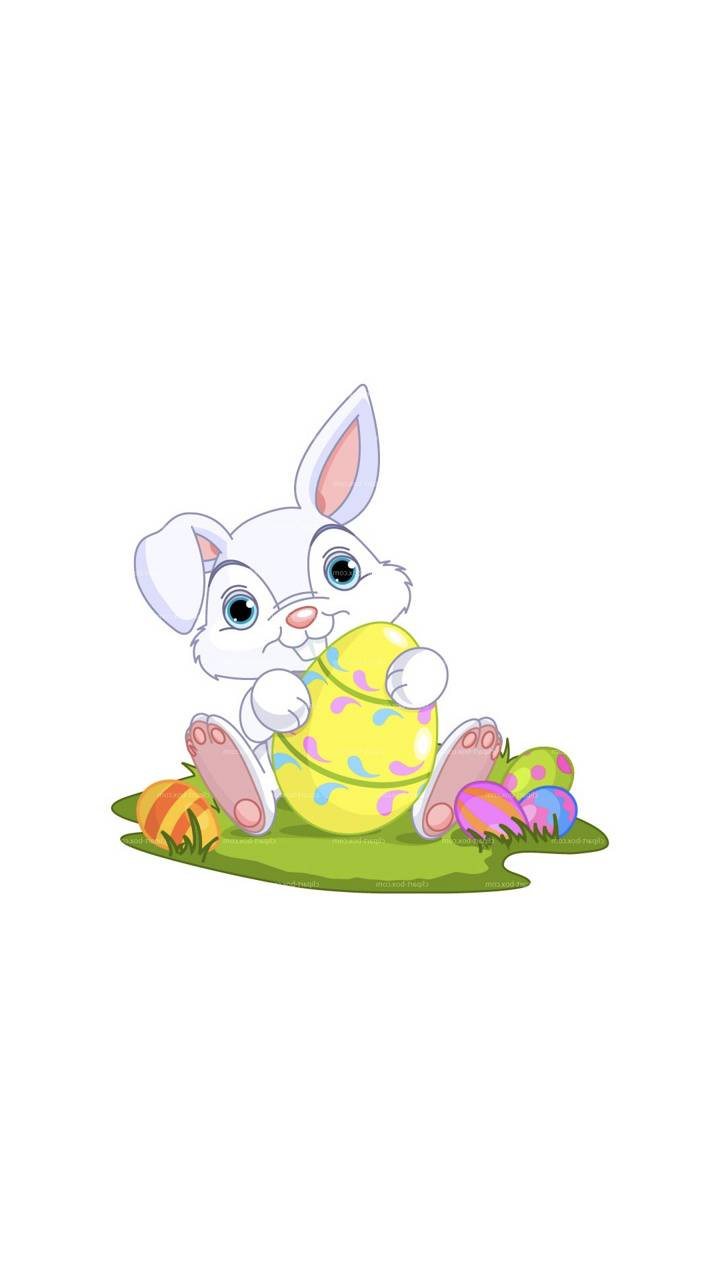 Bunny On White BG