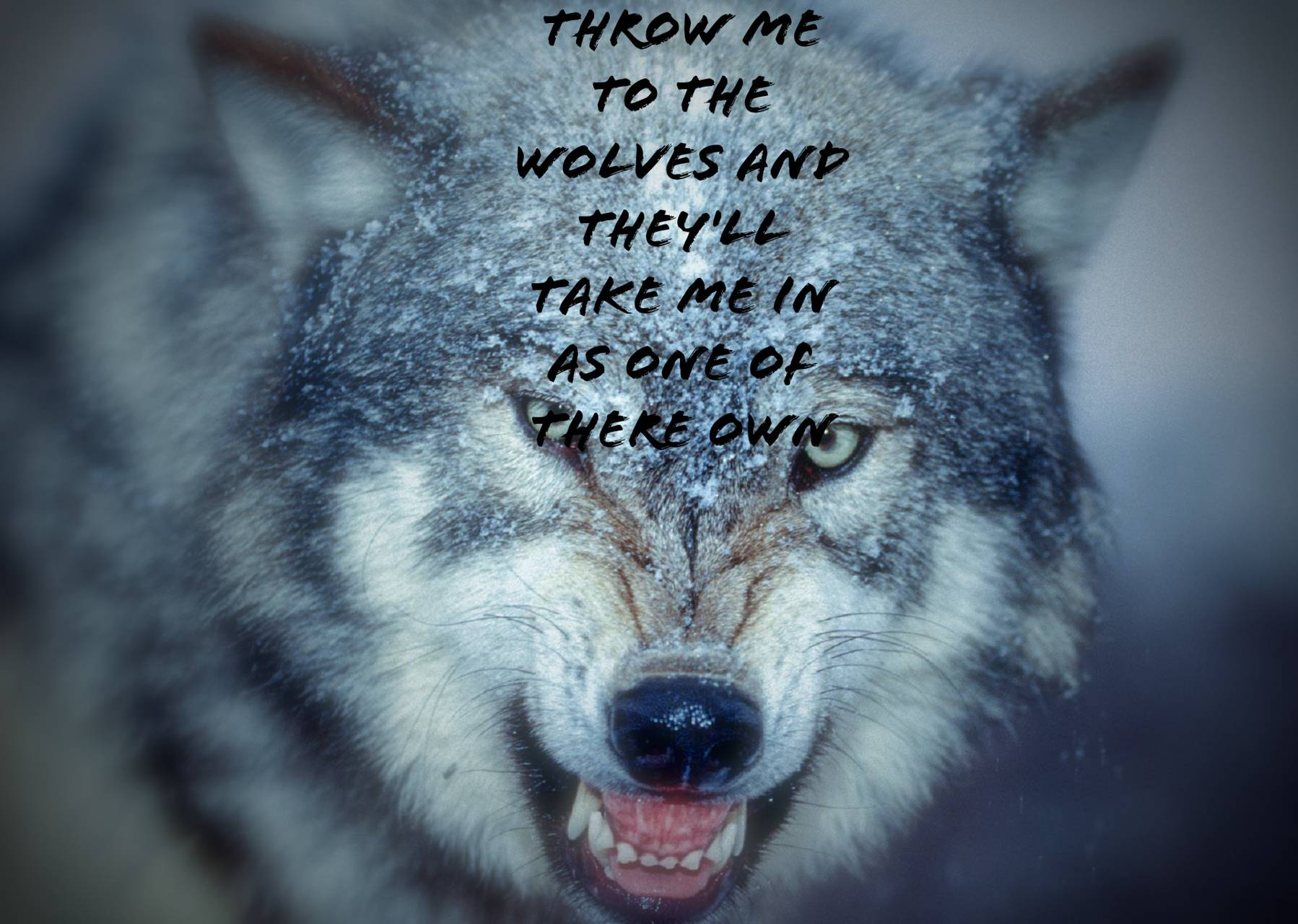 Wolf Quote Wallpaper By Bobbythebuldozer 0d Free On Zedge