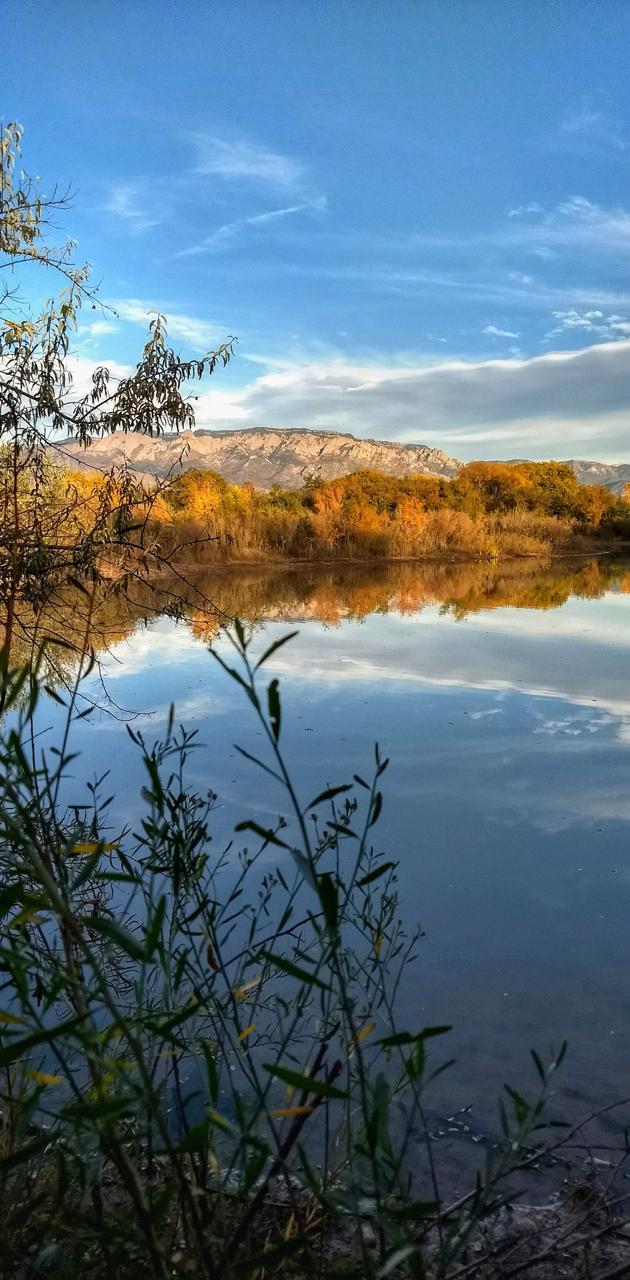 Autumn Wetlands