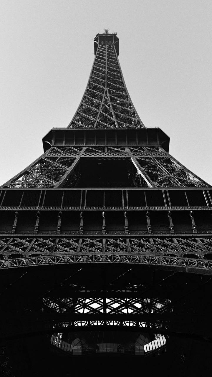Alfa tower