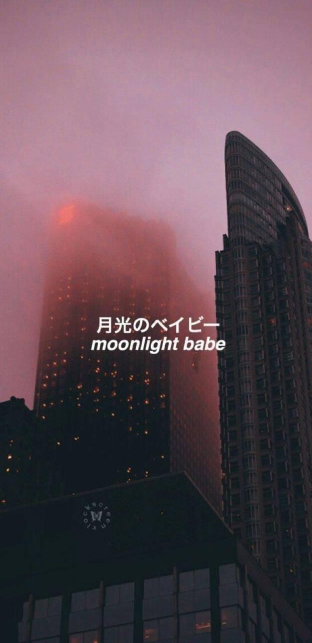 Moonlight babe