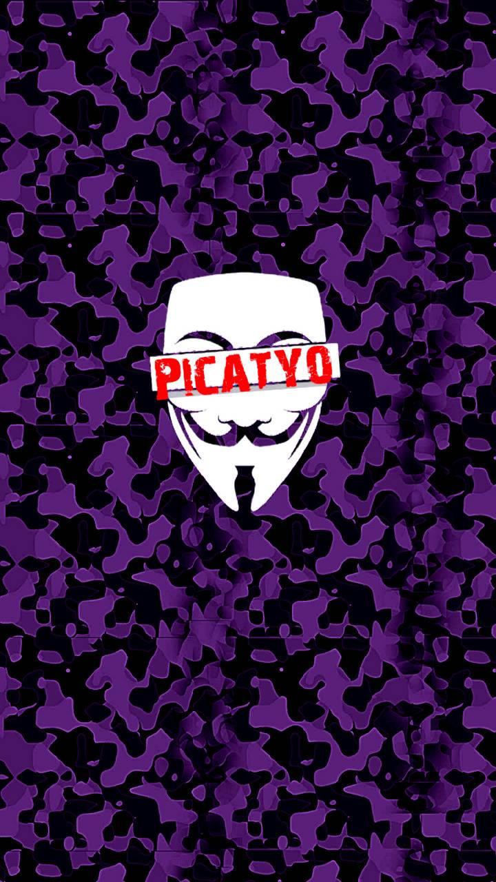 Picatyo-Purple