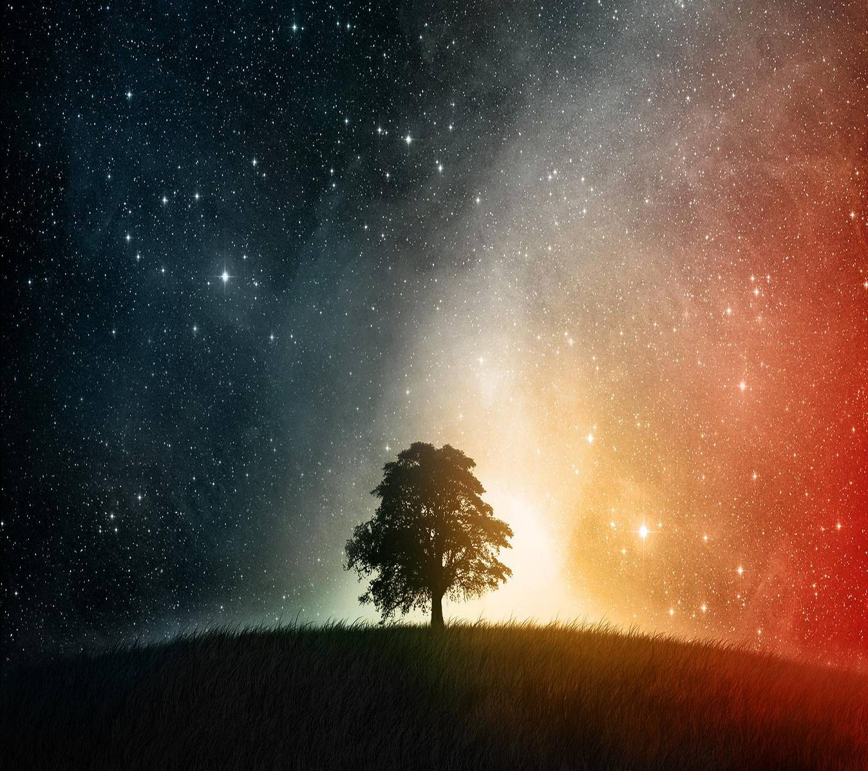 Stars Tree