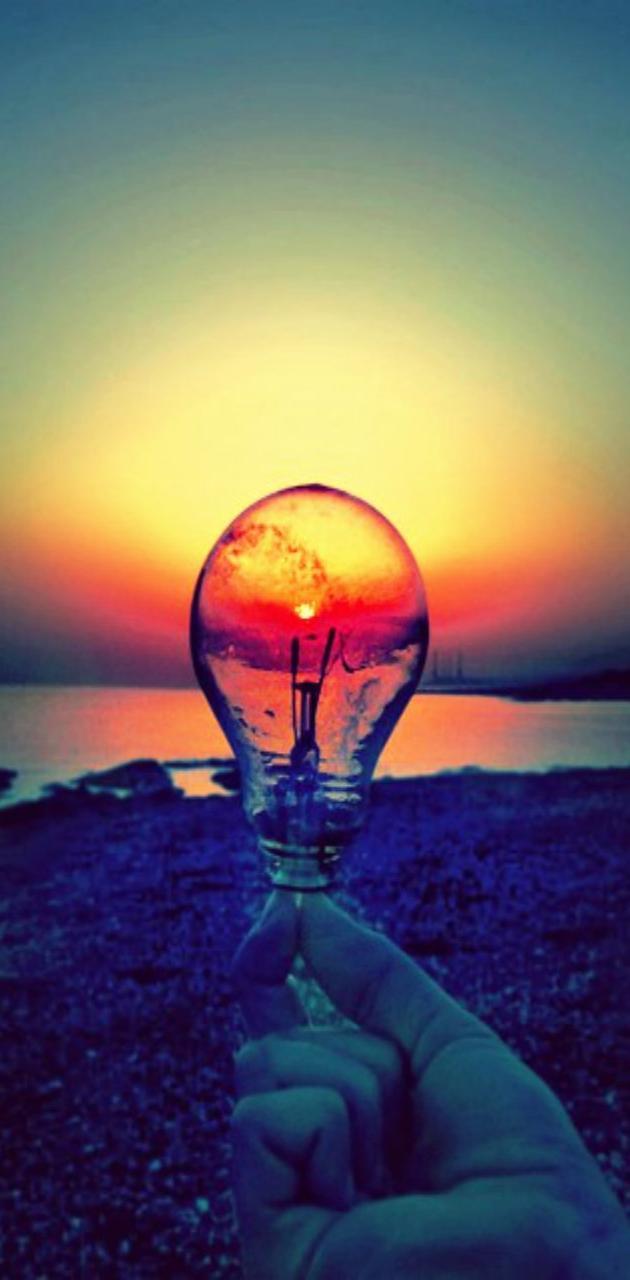 Evening Bulb