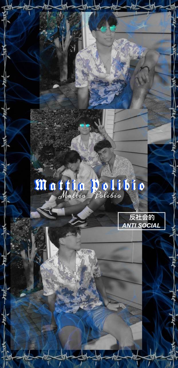 Mattia polibio